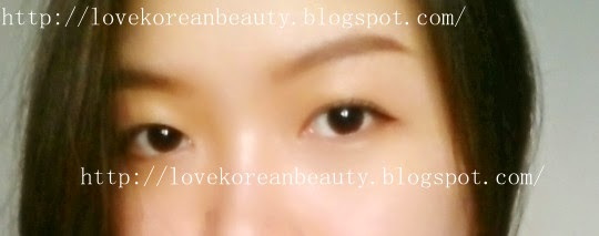 Love Korean Beauty: REVIEW : Etude House Tint My Brow 01