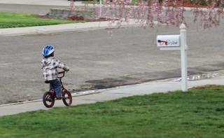 Little boy riding a bike