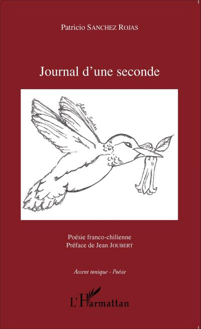 « Journal d'une seconde » Patricio SANCHEZROJAS