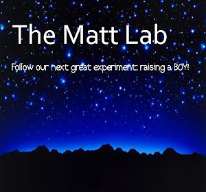 The Matt Lab