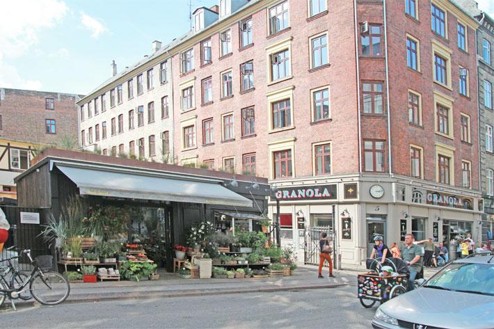 Amalie loves Denmark Blumenladen in Kopenhagen mit Bornholmer Feige