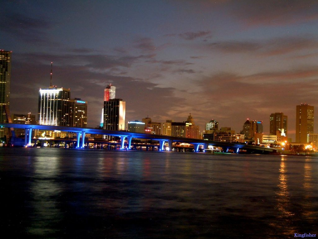 Miami-Night-miami-509542_1024_768.jpeg