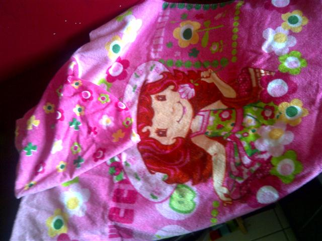 Adelina And Her Strawberry Shortcakes Sally 39 S Thoughts