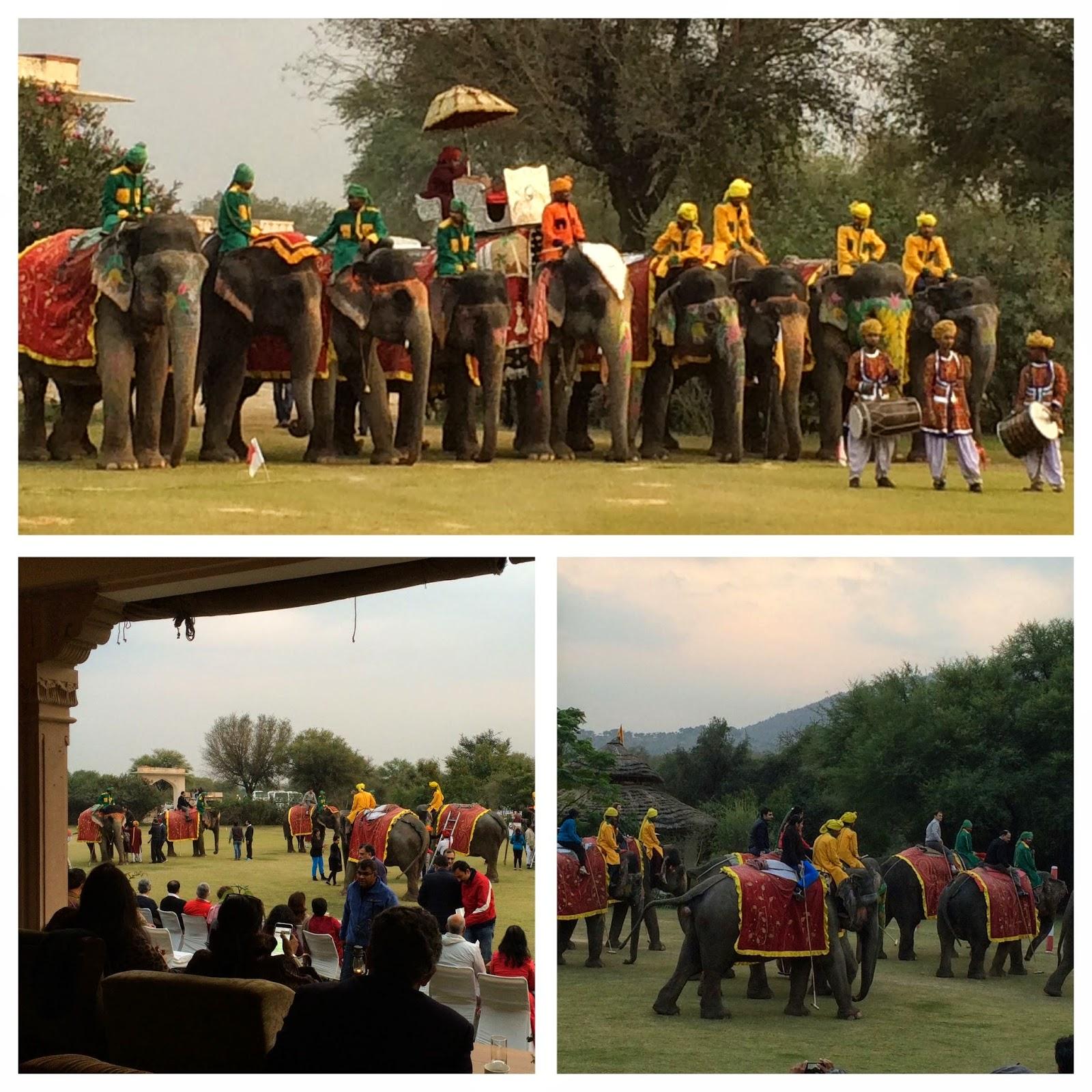 Elephant Polo, Jaipur