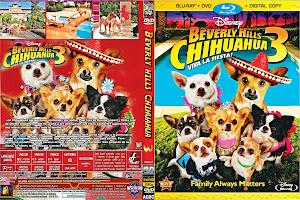 Chihuahua 3 Exclusiva Protegida