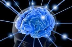 IBM Kembangkan Prosesor Mini Yang Mampu Berpikir Seperti Otak Manusia