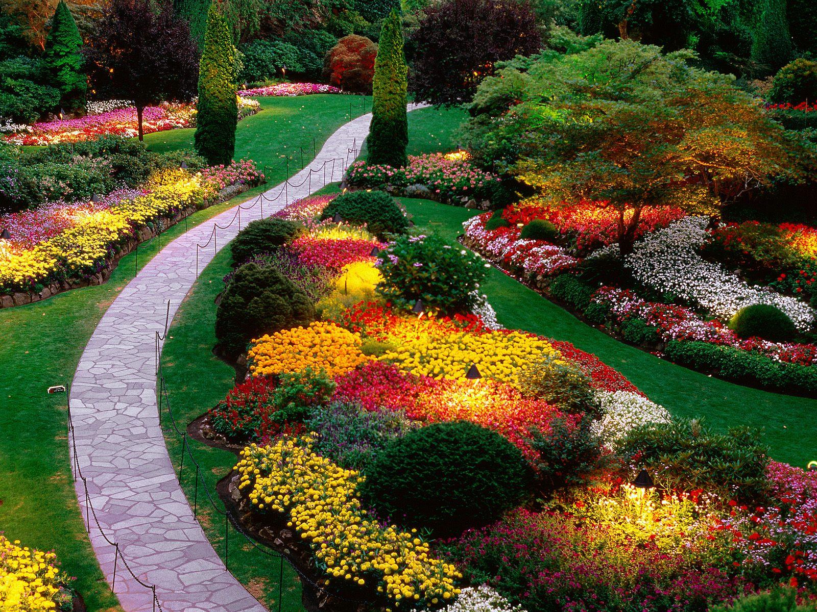 http://3.bp.blogspot.com/-B-E-jjY0cjs/TscWA6_-SgI/AAAAAAAAAhc/o7DPoq2am6M/s1600/flower-garden-wallpaper-hd-2-747079.jpg