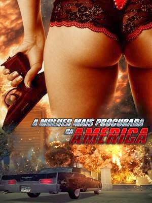 Download A Mulher Mais Procurada da América DVDRip Dublado Torrent