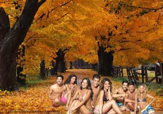 Fundo de tela dos Morangos com Açucar Actores na Praia série juvenil em wallpaper Árvores no Outono