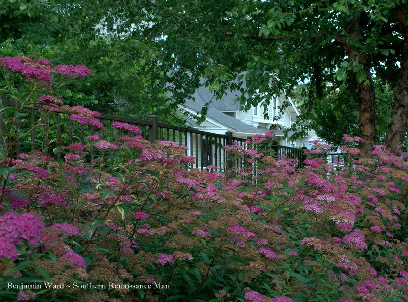 Southern Renaissance Man Lewis Ginter Botanical Garden In Richmond Virginia