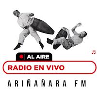 Ariñañara FM