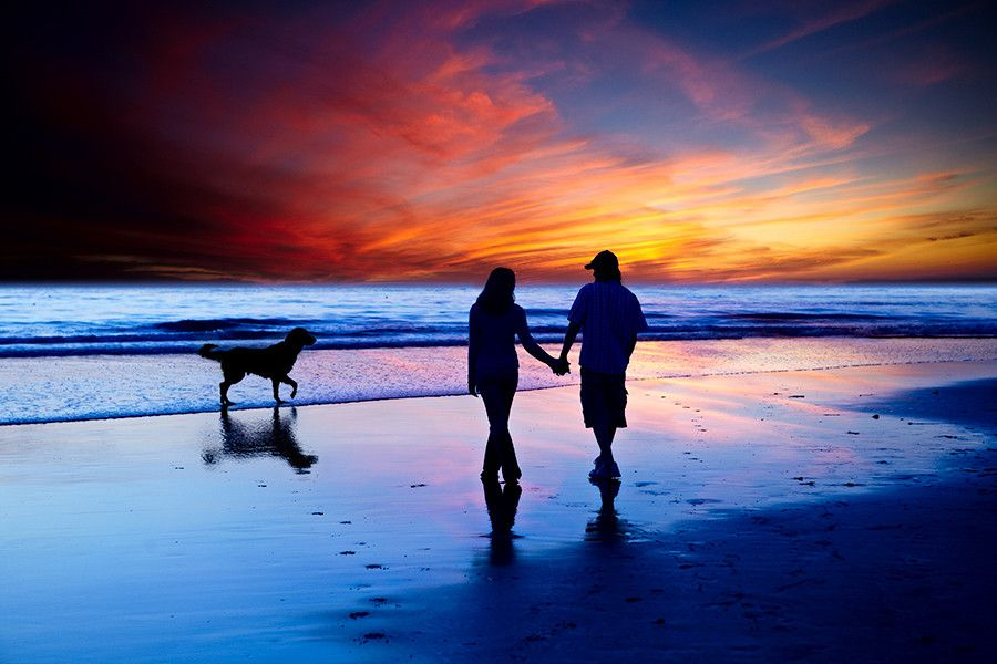 15. Young Couple In Love Walking On The Beach With Golden Retriever by Susan McKenzie