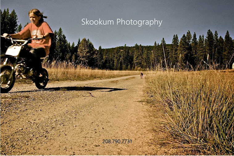 skookum photography