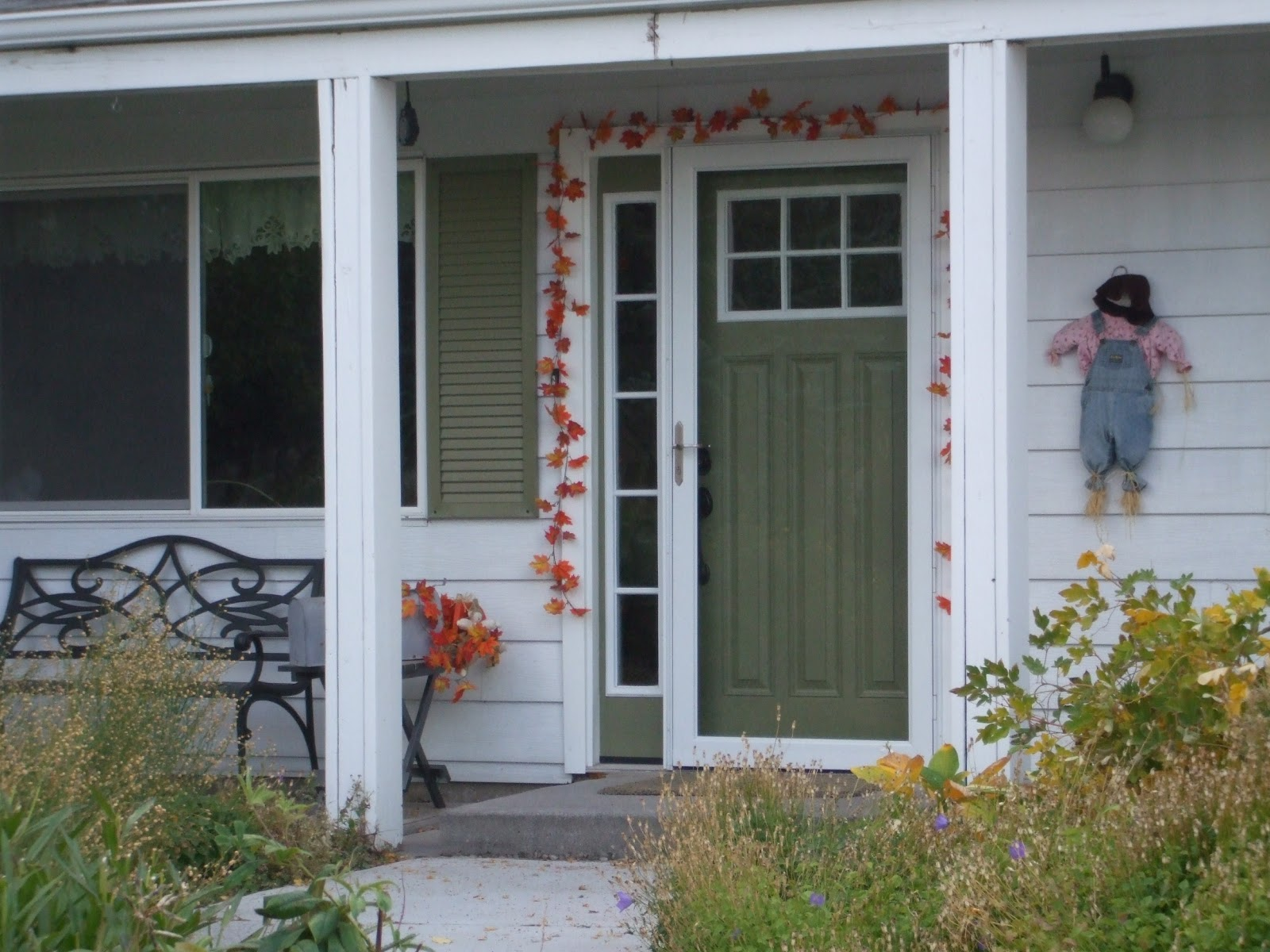 I Said In A Previous Post That I Would Write About Our Storm Doors So I  Shall Do That Today. We Had Different Objectives For The Front And The Back  Of The ...
