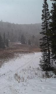 Lake Desolation Trail