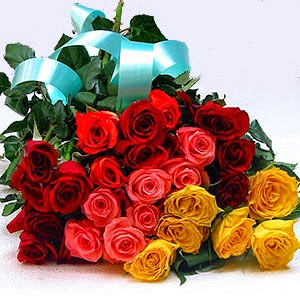 Best Flowers to Give to Your Girlfriend