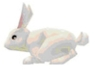 Flyff Rabbit Pet