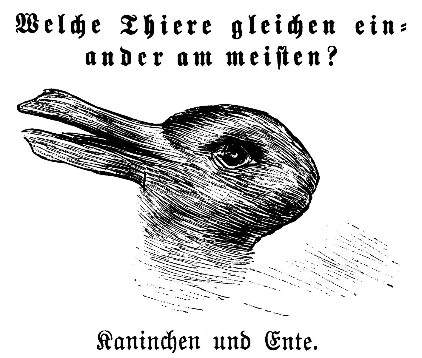 ¿Pato o conejo?