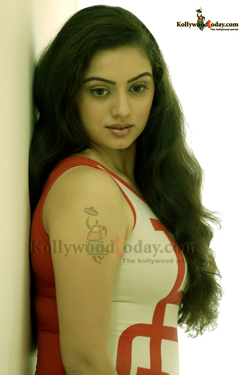 HEMA MALINI HOT   Tamil, kerala, telugu Hot actress photo collection