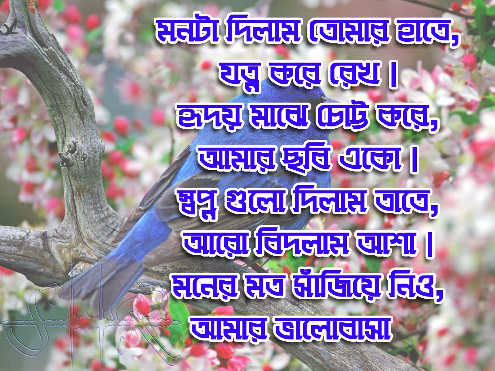 Bangla Sms Picture Bangla Health Tips