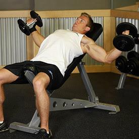 كمال الأجسام: تمارين عضلات الصدر.