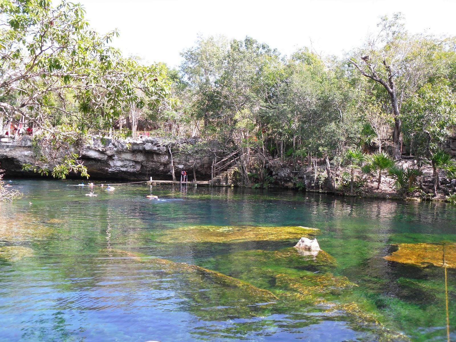 Puerto aventuras feb 2011 cenote jardin del eden for Jardin del eden