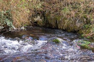 nacedero río Queiles voz mediano moncayo