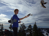 The Trail Effect's UltraChris at the top of Hollyburn Mountain
