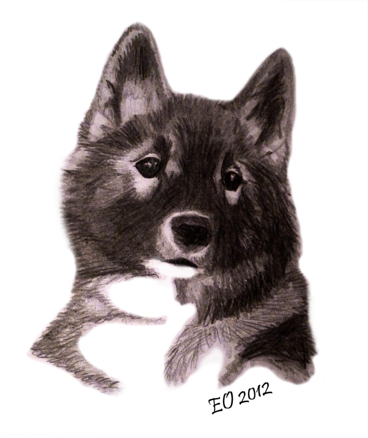 http://3.bp.blogspot.com/-B3MrcJMuFaE/T1Zzx-dYHoI/AAAAAAAABQ8/eXYJR_BlOcQ/s1600/ahsoka+drawing.jpg