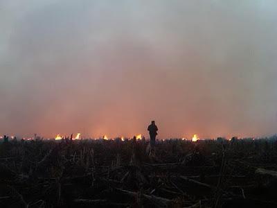 Jerebu : Punca Dan Kesan Berlakunya Jerebu Jun 2013
