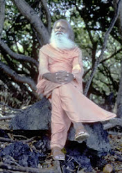 Guru Dev