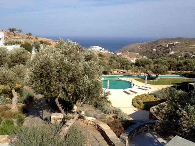 jardin con olivos