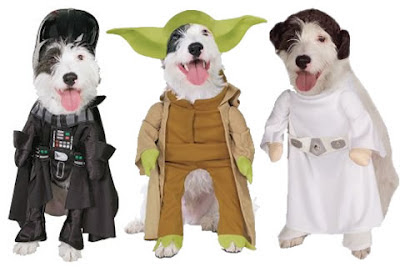dog dressed in star wars gear leia darth vadar yoda