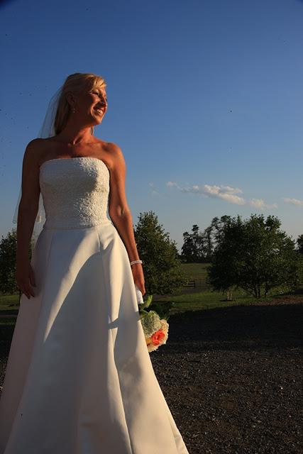 Bridal Portrait Doukenie Vineyard| Whysall Photography