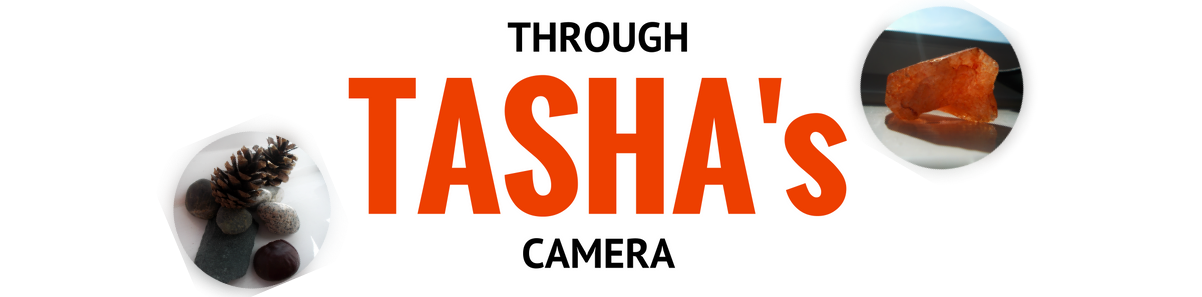 Through Tasha's Camera