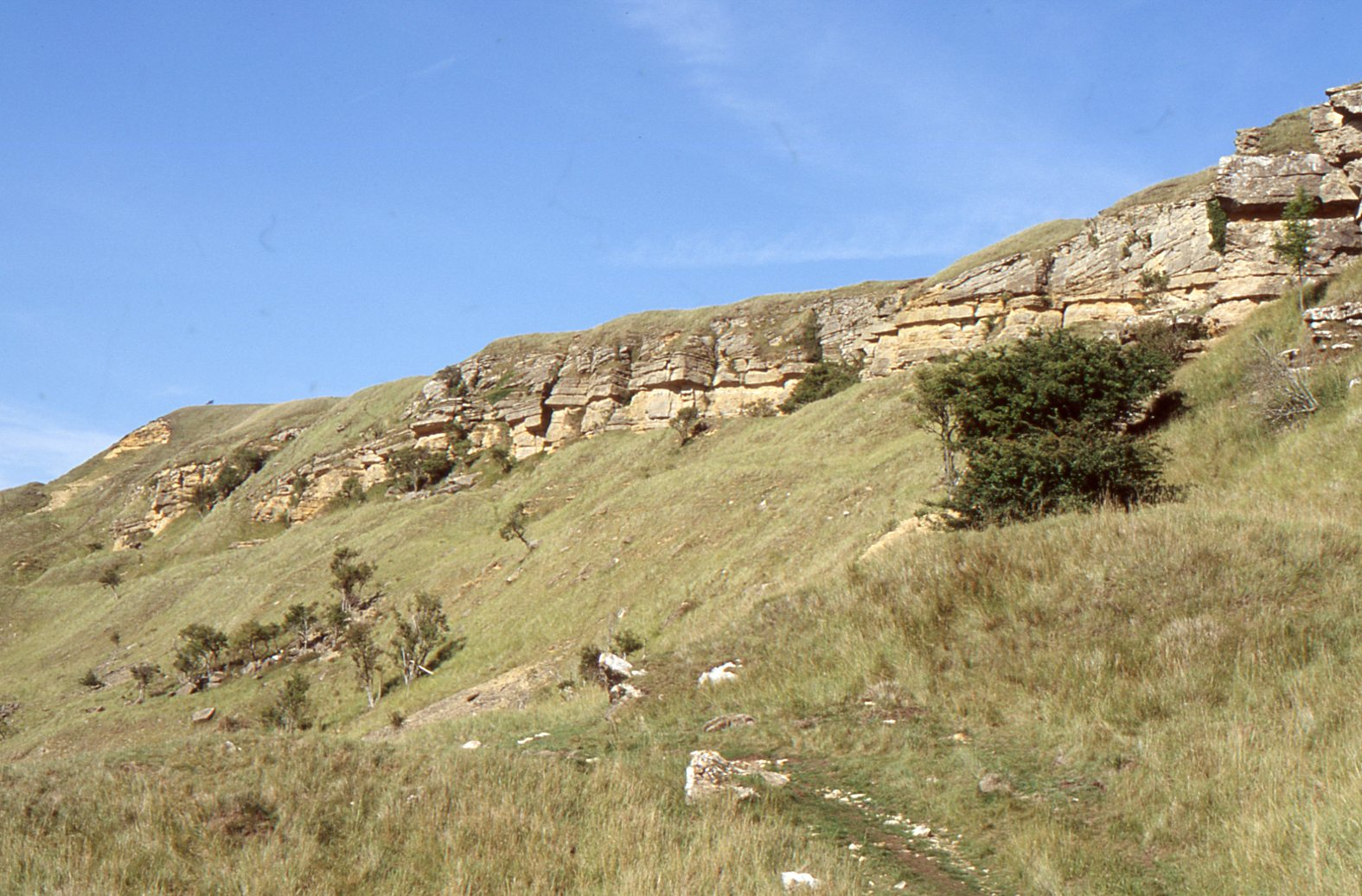The cotswolds geology