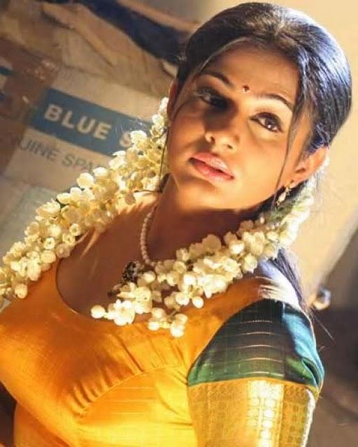 South Actress Priyamani In Sey Hot Saree Blouse Stills Priyamaniboobs