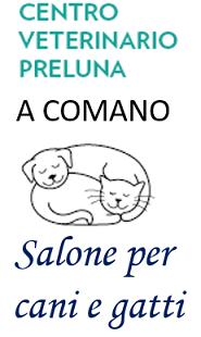 Via Preluna 24, 6949 Comano