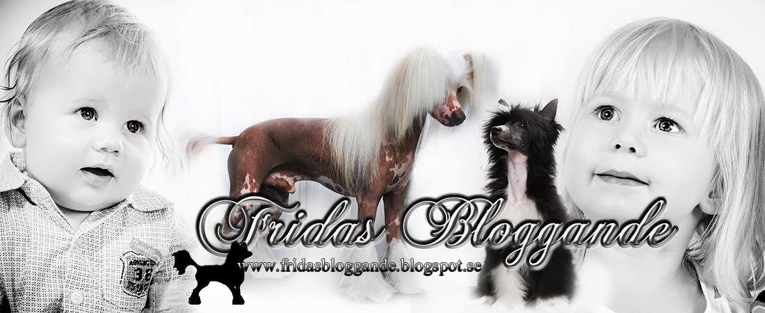 Fridas hund och familjeblogg!