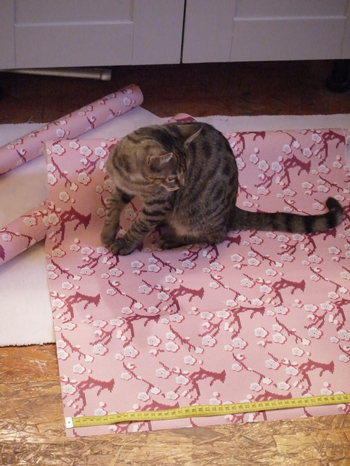 chat papier