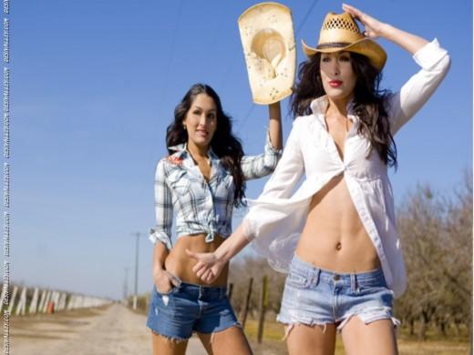 Bella Twins Nikki & Brie Bella Sexy