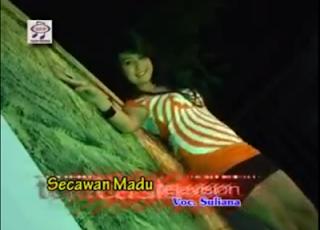 Download Video Karaoke Hot Suliana - Secawan Madu 3gp