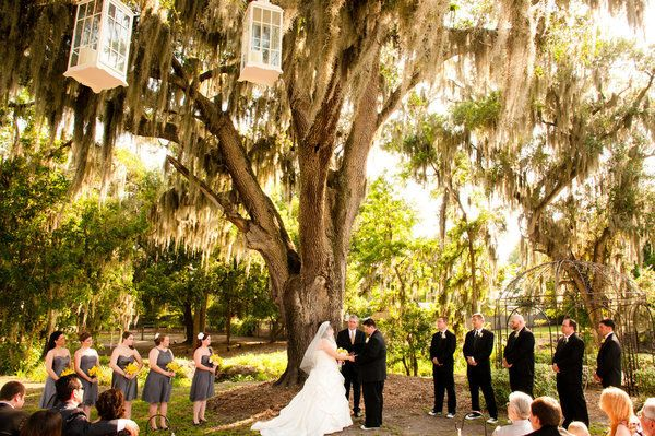 A stylish affair by jessie tampa wedding venues cross creek ranch junglespirit Image collections