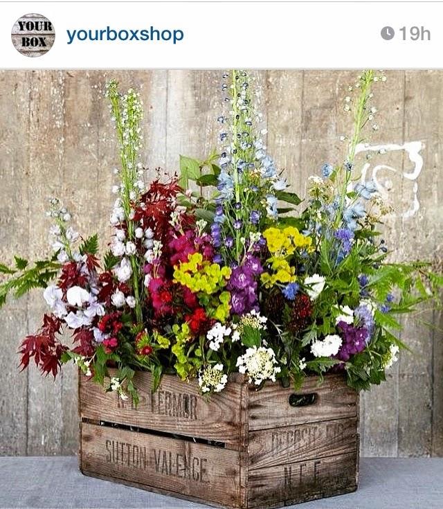 Entrando ya en la primavera con flores, plantas y estampados