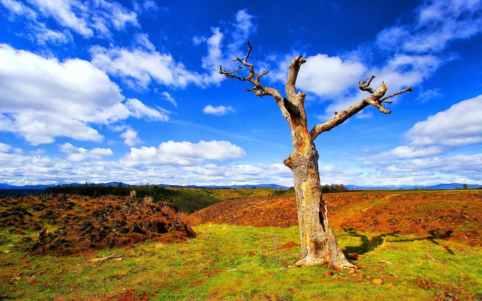 Hd wallpapers blog nature photos and themes for Ideanature