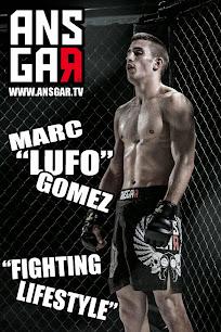 ANSGAR FIGHTSHORTS MMA