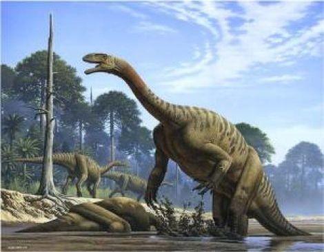 Dinosaurus (sumber:dinosaurusi.com)