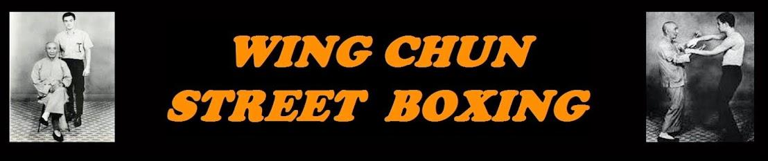 WING CHUN STREET BOXING