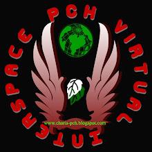 PCH Virtual Interspace