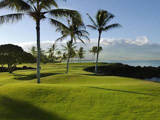pemandangan kebun kelapa pantai sire medana